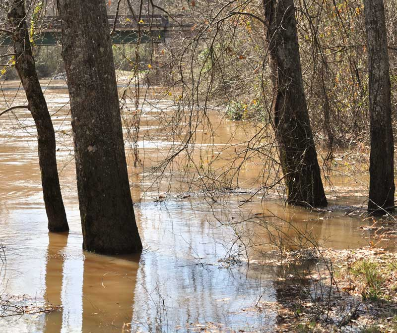 13307-news11-2812flint-river-looking-toward-woolsey-bridgeprintweb